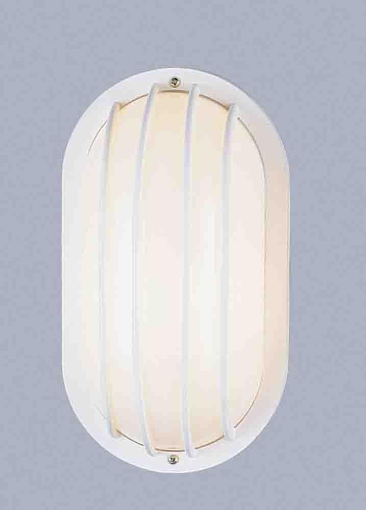 1 Light Wall Polypropylene Lantern Wet Location