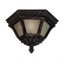 Acclaim Lighting 705MM - Two Light Marbleized Mahogany Outdoor Flush Mount