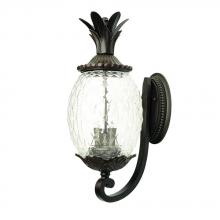 Acclaim Lighting 7501BC - Lanai Collection Wall-Mount 2-Light Outdoor Black Coral Light Fixture