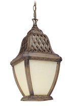 Troy FF2087BI - One Light Biscayne Hanging Lantern